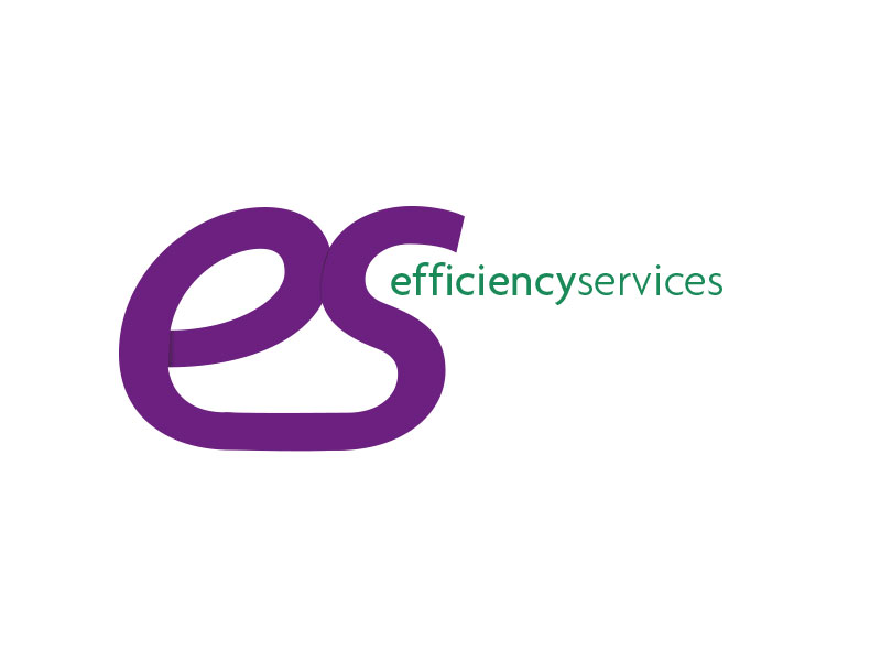 Efficiency Services